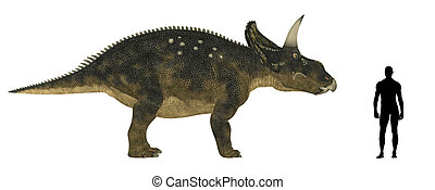 Nedoceratops Size Comparison - Illustration of a comparison...