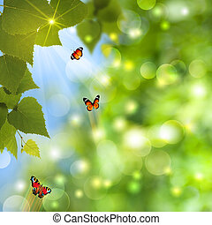 Abstract summer backgrounds with sun beam and butterfly