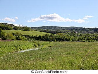 Landschaft - saftige Wiese mit Fluss