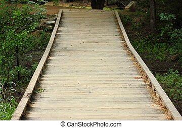 Wooden Walkway - Wooden walkway in woods over a drainage...