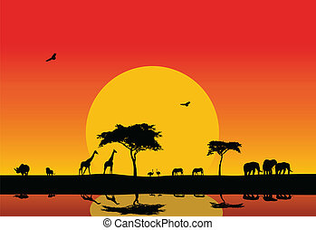 silhouette of wildlife in the lake