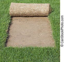 Grass Carpet Cover - Grass Carpet Rolls Peeled from Sod