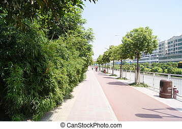 sidewalk - The pavement, with trees, convenient for people...