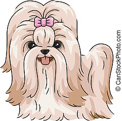 Shih Tzu - Illustration Featuring a Shih Tzu