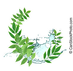 Leaves And Water - Ecology conceptAbstract composition with...