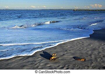 Botany Bay sunset beach
