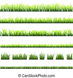 Collection of different types of green grass .Vector eps10