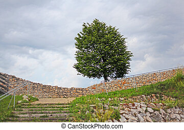 Lonely tree and ruins of medieval castle in Austria
