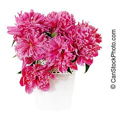 Pink peony flowers in white vase. Isolated on white