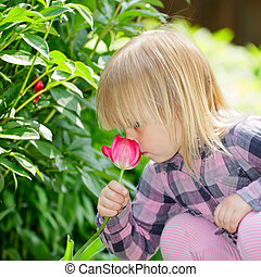 Child with flower - Little girl smelling red tulip in a...