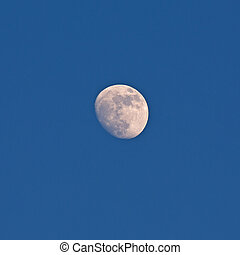 Half moon - bright half moon over deep blue sky background