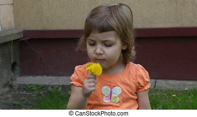 dandelion - Girl with a dandelion
