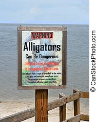 warning alligators sign on a rivers edge on the eastcoast of...
