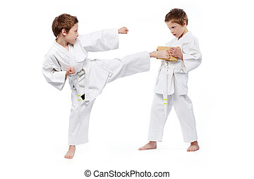 Karate kids - Twin boys practicing karate, one of them...