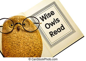 Owl With Book / Wise Owls Read - Funny owl with glasses...