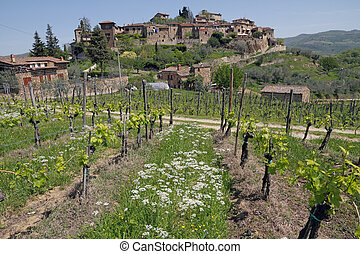 landscape with vineyards in spring and old village on hil -...