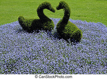 flowerbed with two green shaped swans