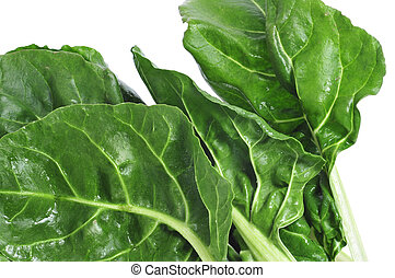 chard - closeup of chard leaves on a white background