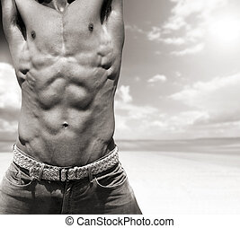 Abs - Naked torso with high detail showing defined muscular...