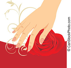 Female hand and red rose. Vector illustration