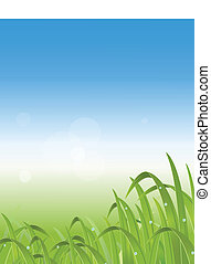 illustration of grass backgr - vector illustration of grass...