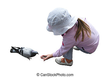 The girl feeding the pigeon isolated on the white background