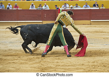 Torero - A matador fighting in a typical Spanish bullfight