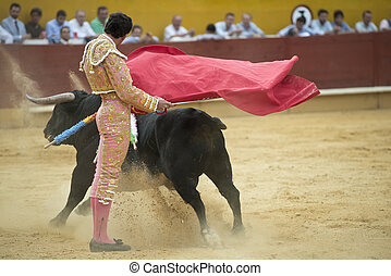 Matador - A matador fighting in a typical Spanish bullfight.