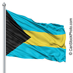 Waving flag of Bahamas