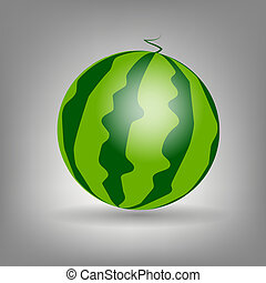watermelon icon vecotr illustration
