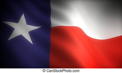Flag of Texas seamless