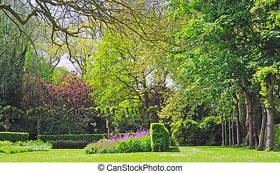 Park with trees, bushes and purple flowers in spring time