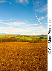 Plowed Fields - The Italian Town Surrounded by Forests and...