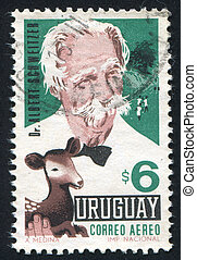 Doctor Albert Schweitzer - URUGUAY - CIRCA 1967: stamp...