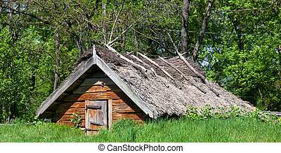 Old house with dried straw roof