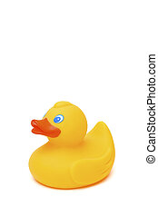 yellow toy duck - yellow rubber toy duck isolated on a white...