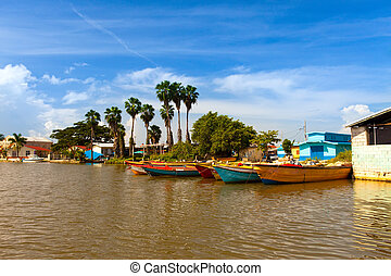 Jamaica. National boats on the Black river