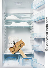 Polar bear in refrigerator with North Pole sign. Global...