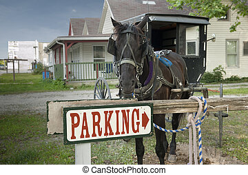 parking horse and buggy - A horse and buggy are tied up to a...