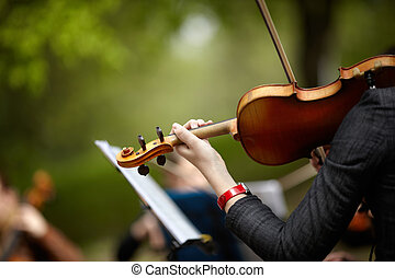 violin - hnad of woman with violin, selective focus on...