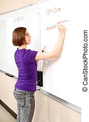 Teen Girl - Advanced Math Student
