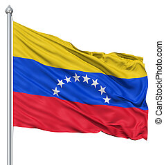 Waving flag of Venezuela - Flag of Venezuela with flagpole...