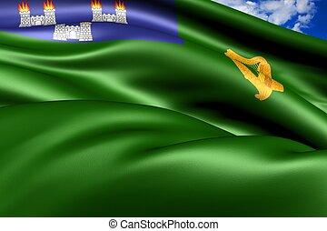 Flag of Dublin, Ireland Close Up