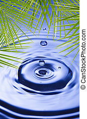 Palm leaves over water - Palm leaves over blue water...