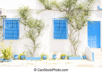 typical white Tunisian architecture mansion Sidi Bou Said...