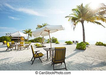 Beach scene - tropical beach