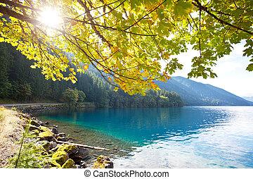 Autumn lake - autumn lake