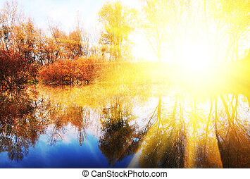 Autumn lake - Picturesque rural landscapes on lake