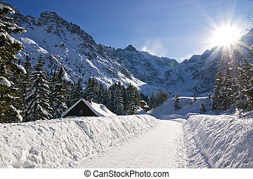 Panoramic Polish Tatras in winter scenery