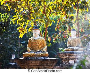 Buddhas statue - Buddhas garden in Myanmar